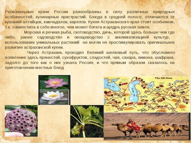 Региональные кухни России разнообразны в силу различных природных особенносте...