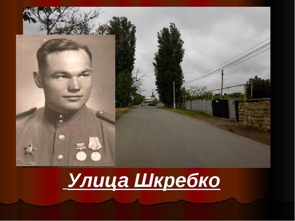 Улица Шкребко