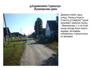 д.Курманаево-Туршалук. Йуканмучаш урем Деревня имеет одну улицу. Конец улицы