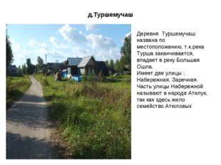 д.Туршемучаш Деревня Туршемучаш названа по местоположению, т.к.река Турша зак