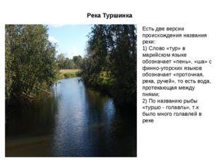 Река Туршинка Есть две версии происхождения названия реки: 1) Слово «тур» в м