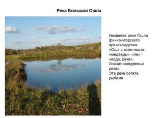 Река Большая Ошла Название реки Ошла финно-угорского происхождения. «Ош» с ко