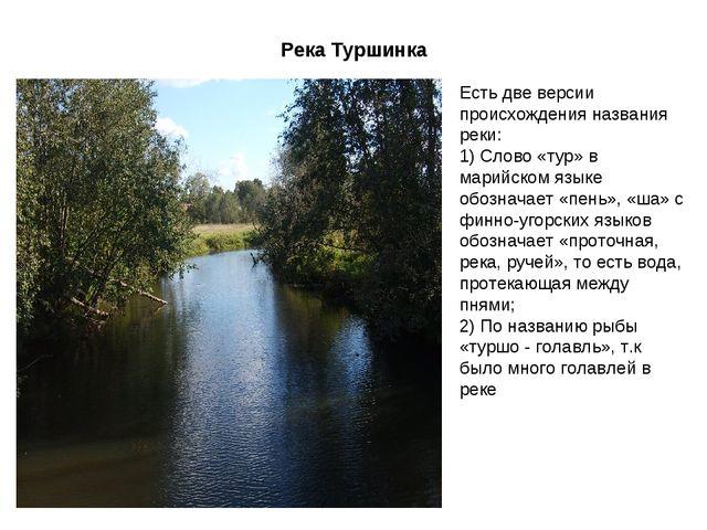Река Туршинка Есть две версии происхождения названия реки: 1) Слово «тур» в м...