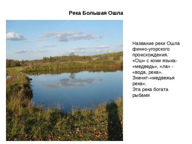 Река Большая Ошла Название реки Ошла финно-угорского происхождения. «Ош» с ко...