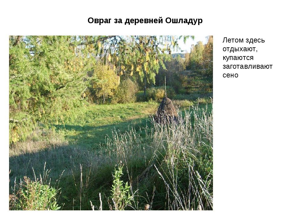 Овраг за деревней Ошладур Летом здесь отдыхают, купаются заготавливают сено