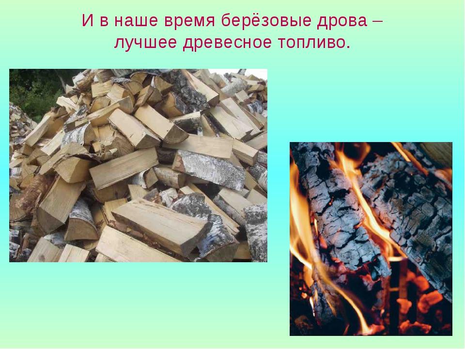 И в наше время берёзовые дрова – лучшее древесное топливо.