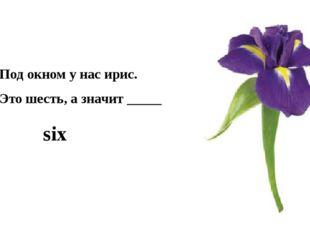 Под окном у нас ирис. Это шесть, а значит _____ six