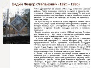 Бадин Федор Степанович «Серая громада здания с глазницами амбразур выглядит з