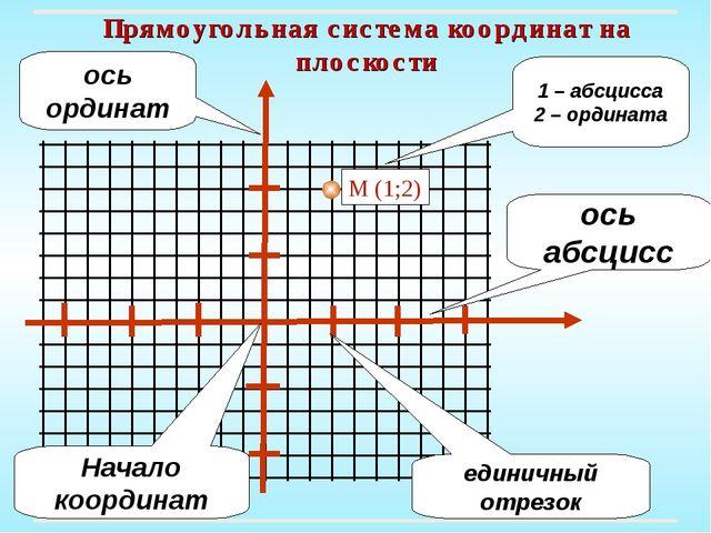 Прямоугольная система координат на плоскости ось ординат единичный отрезок На...