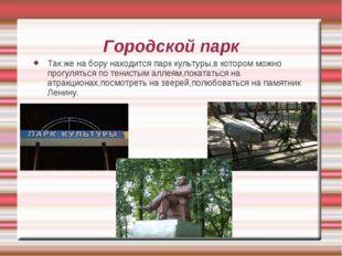 Городской парк Так же на бору находится парк культуры,в котором можно прогуля