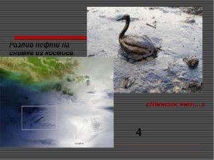 «Шансов нет…» Разлив нефти на снимке из космоса 4