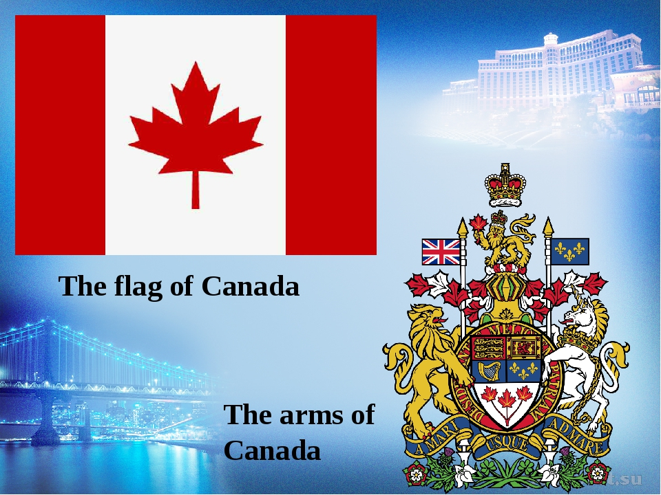 The flag of Canada The arms of Canada