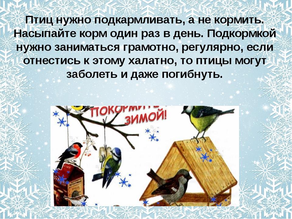 Птиц нужно подкармливать, а не кормить. Насыпайте корм один раз в день. Подко...