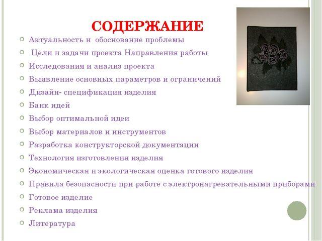 СОДЕРЖАНИЕ Актуальность и обоснование проблемы Цели и задачи проекта Направле...