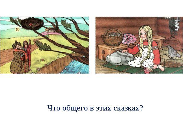 Что общего в этих сказках?
