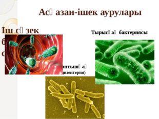 Асқазан-ішек аурулары Іш сүзек бактериясы-сальмонелла Тырысқақ бактериясы Қан