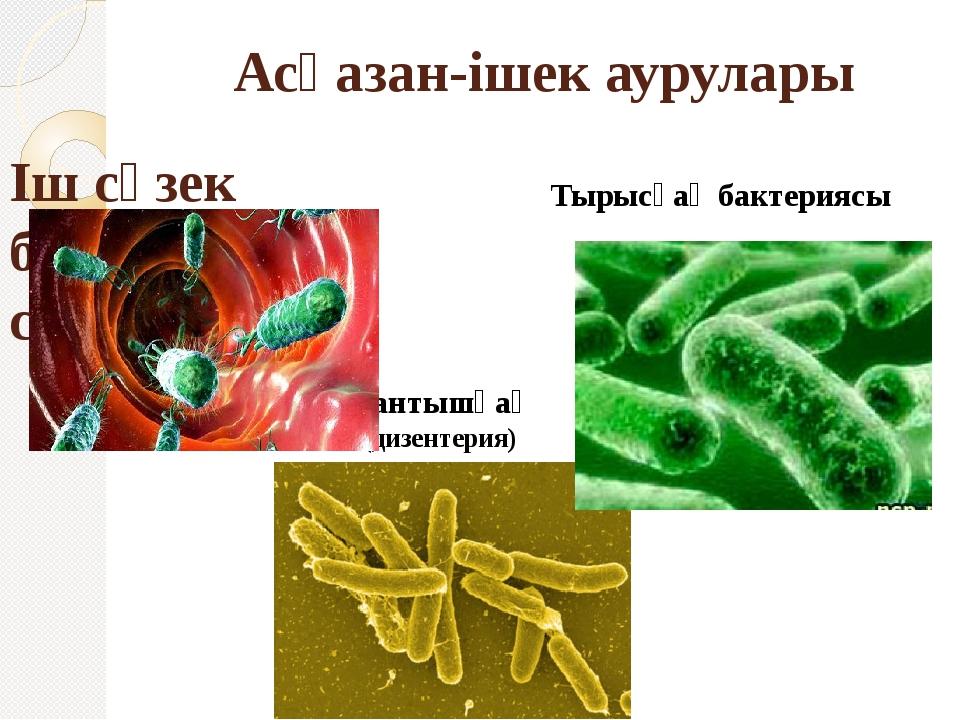 Асқазан-ішек аурулары Іш сүзек бактериясы-сальмонелла Тырысқақ бактериясы Қан...