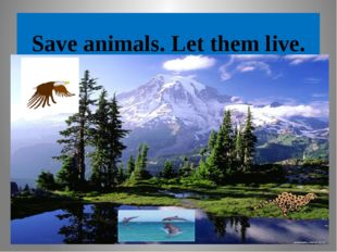 Save animals. Let them live.