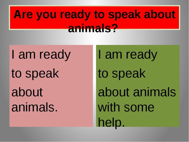 Are you ready to speak about animals? I am ready to speak about animals. I am...