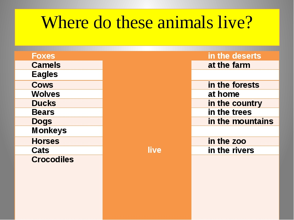 Where do these animals live? Foxes live in the deserts Camels at the farm Eag...