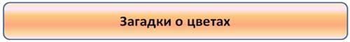 hello_html_m4cf4c03b.jpg