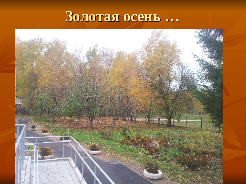 Золотая осень …