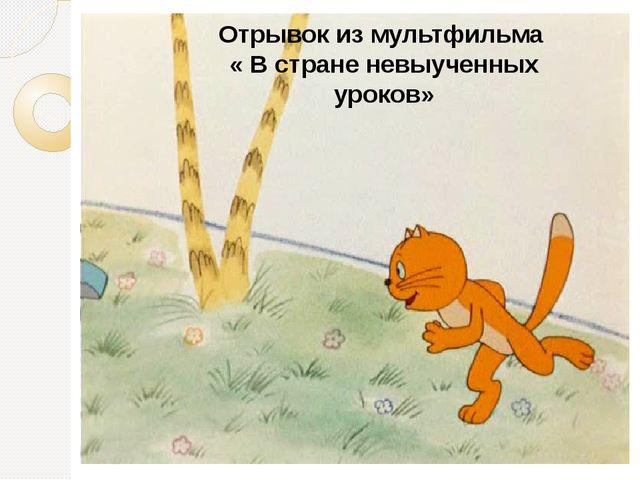 Отрывок из мультфильма « В стране невыученных уроков»