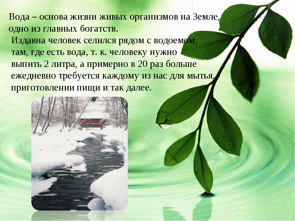 Вода – основа жизни живых организмов на Земле, одно из главных богатств. Изда...