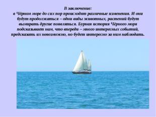В заключение: в Чёрном море до сих пор происходят различные изменения. И они
