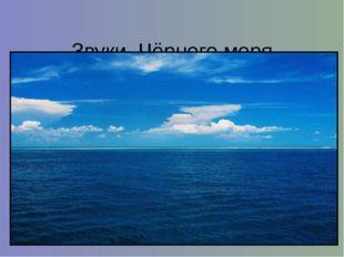 Звуки Чёрного моря