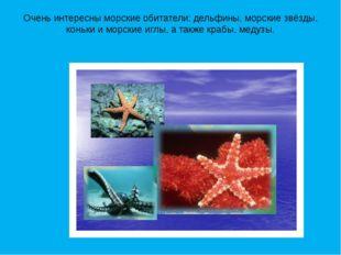 Очень интересны морские обитатели: дельфины, морские звёзды, коньки и морские