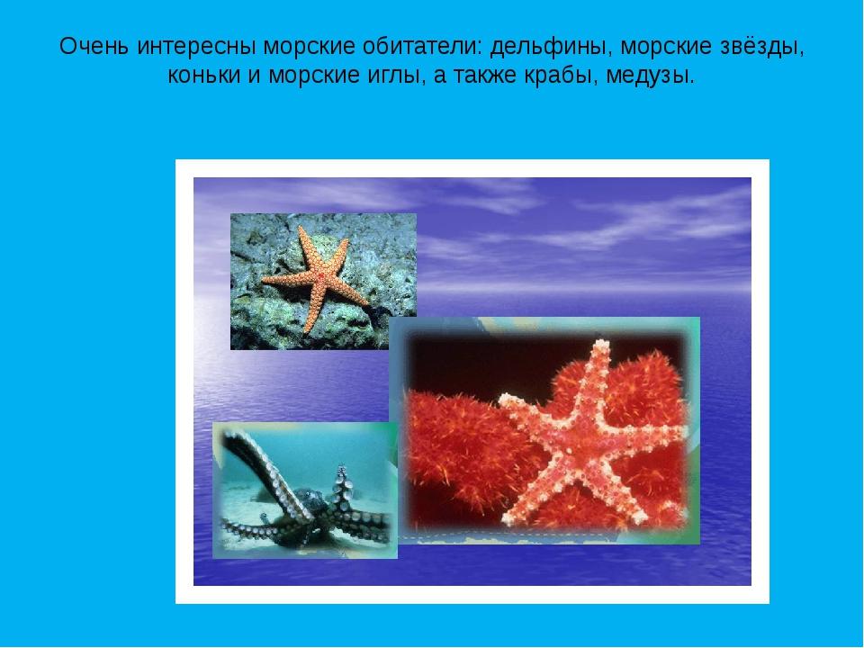 Очень интересны морские обитатели: дельфины, морские звёзды, коньки и морские...