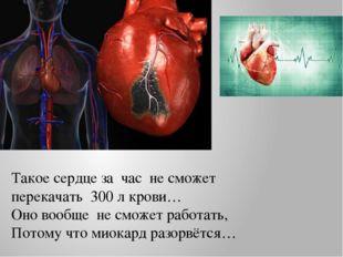 Такое сердце за час не сможет перекачать 300 л крови… Оно вообще не сможет ра