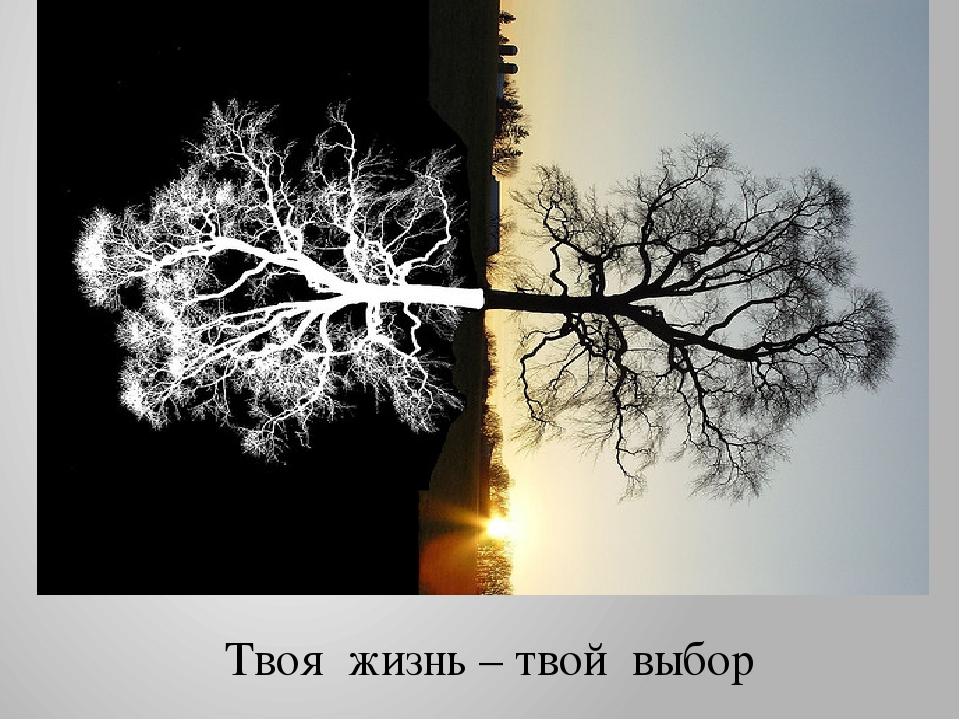 Твоя жизнь – твой выбор