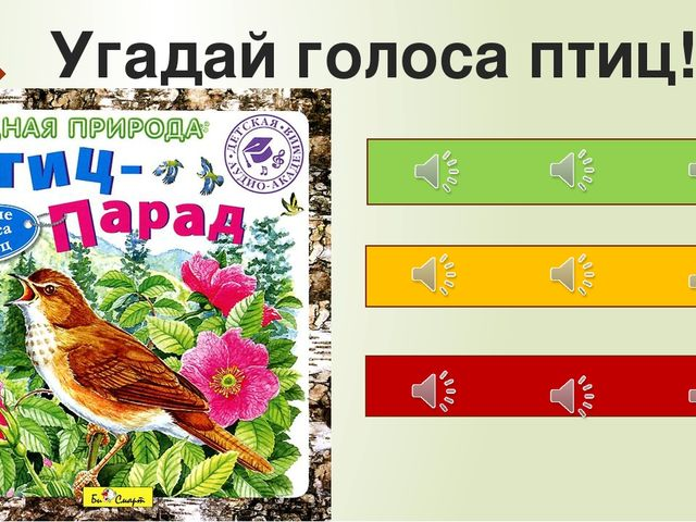 Угадай голоса птиц!