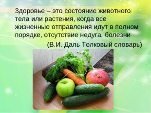 Здоровье – это состояние животного тела или растения, когда все жизненные от