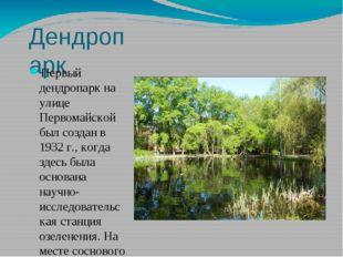 Дендропарк Первый дендропарк на улице Первомайской был создан в 1932г., когд