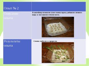 Семена набухли и проросли. Опыт № 2 Описание опыта В контейнер положили сухие