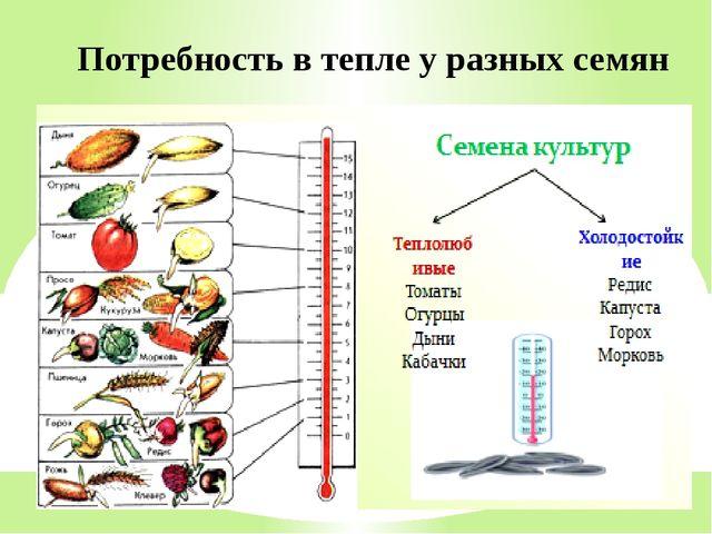 Потребность в тепле у разных семян