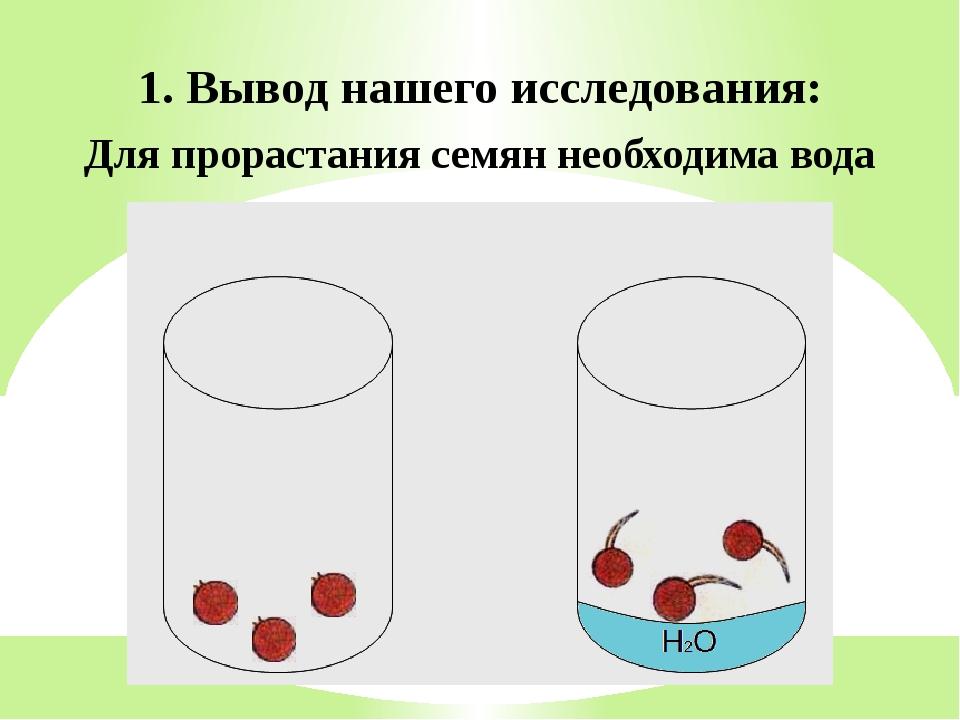 1. Вывод нашего исследования: Для прорастания семян необходима вода