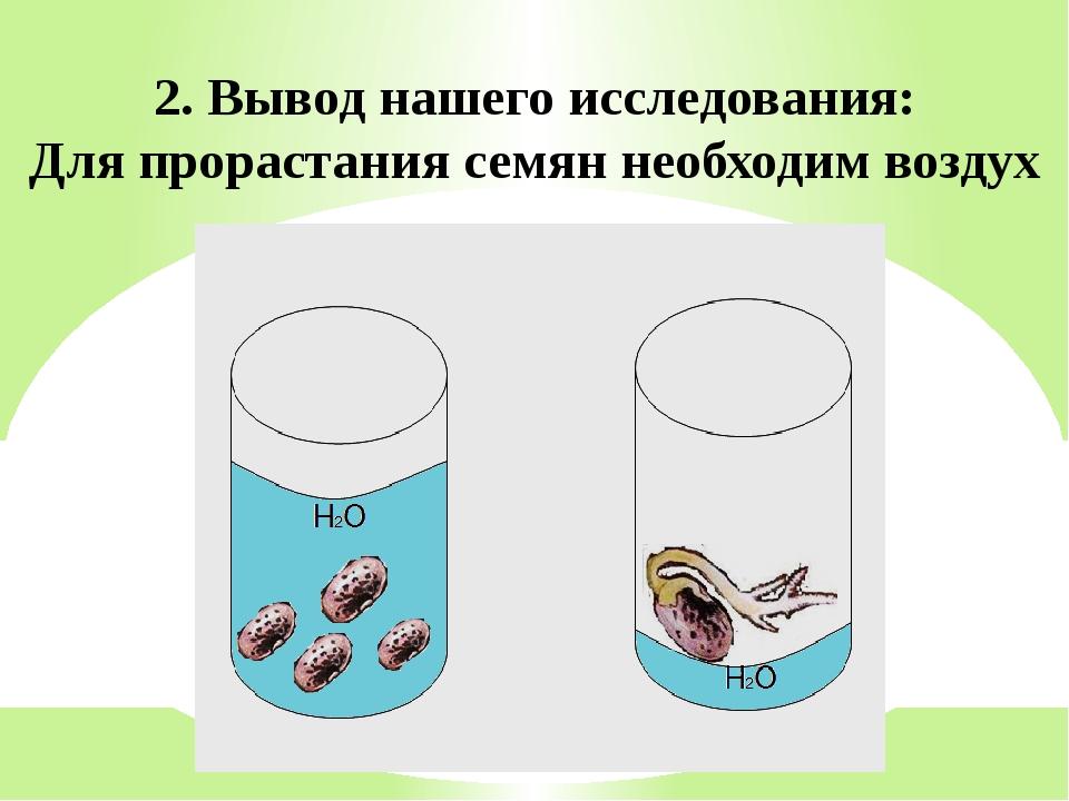 2. Вывод нашего исследования: Для прорастания семян необходим воздух