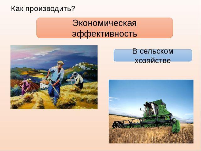 Экономическая эффективность В сельском хозяйстве Как производить?