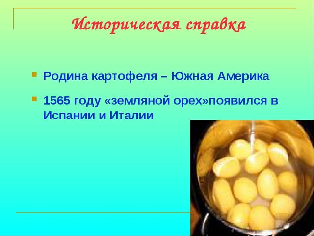 Историческая справка Родина картофеля – Южная Америка 1565 году «земляной оре...