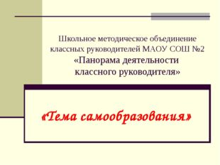 Школьное методическое объединение классных руководителей МАОУ СОШ №2 «Панорам