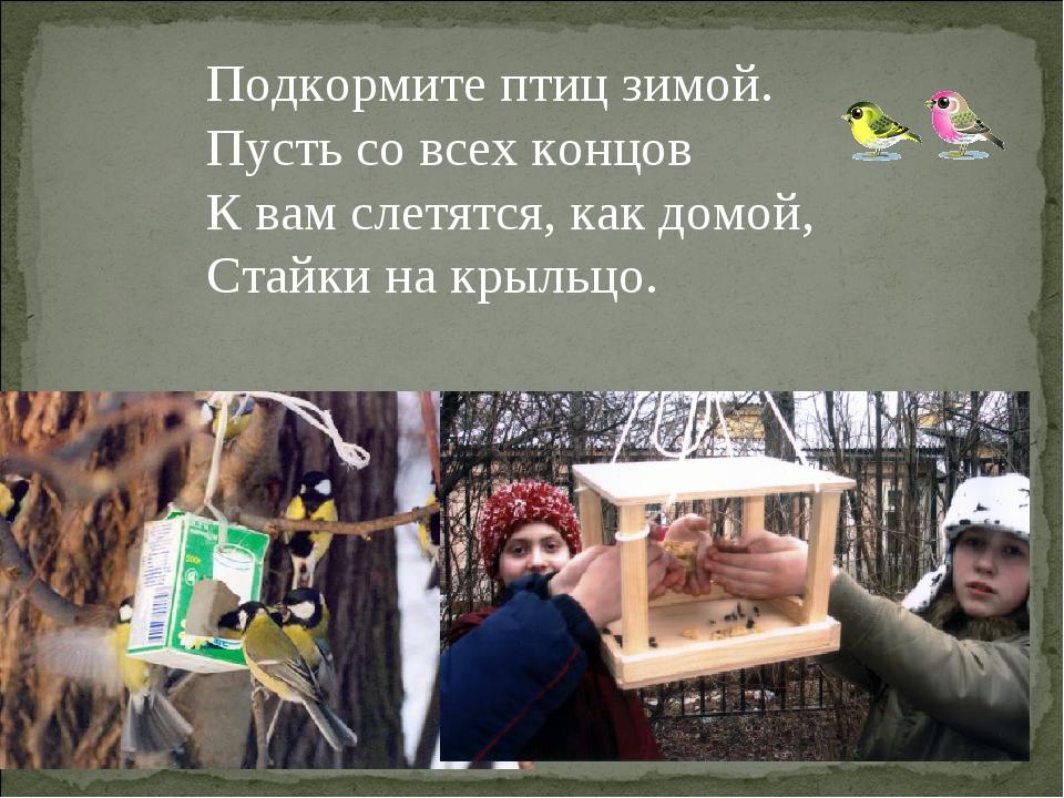 Подкормите птиц зимой. Пусть со всех концов К вам слетятся, как домой, Стайк...
