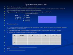 Практическая работа №1 Тема: Измерение площади и периметра прямоугольника.