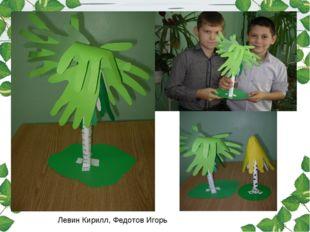 Левин Кирилл, Федотов Игорь