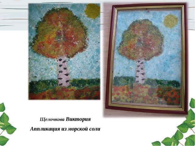 Щелочкова Виктория Аппликация из морской соли