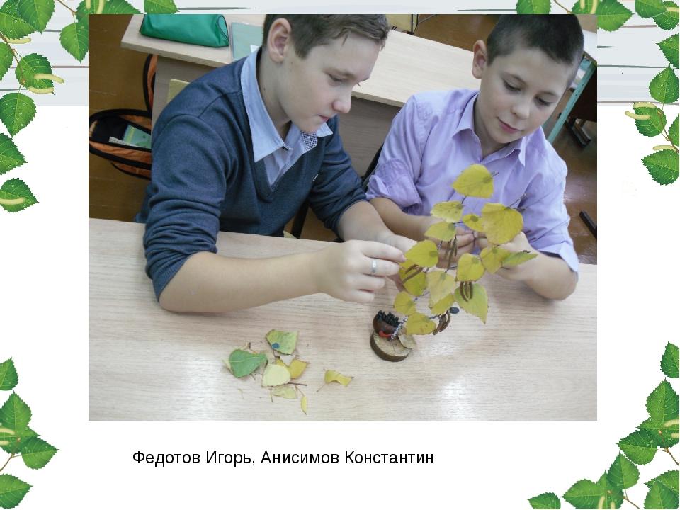 Федотов Игорь, Анисимов Константин