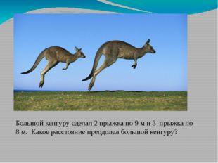 Большой кенгуру сделал 2 прыжка по 9 м и 3 прыжка по 8 м. Какое расстояние пр